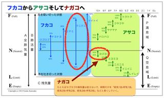 asakofukakonagako.jpg