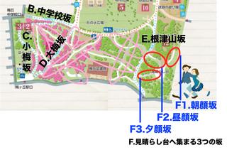 02.見晴らし台へ集まる.jpg