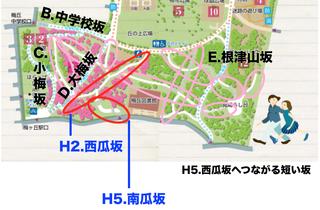 05.西瓜坂へつながる短い坂.jpg
