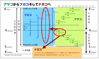 A2F2N.jpg