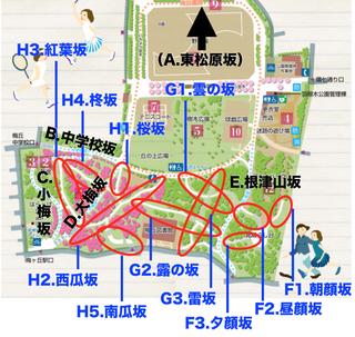 hanegi_final.jpg